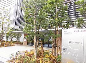 side_takahama
